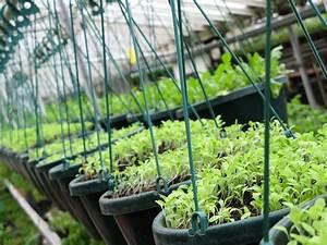 Urban Gardening Definition : december 2010 jack cochran writing and research ~ Eleganceandgraceweddings.com Haus und Dekorationen