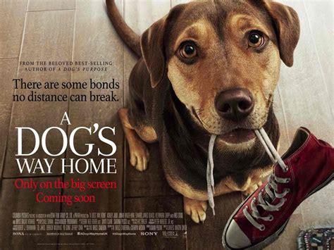 dogs  home  trailer  reveals