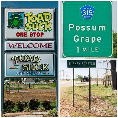 Arkansas Animal Towns Suck Toad Tour