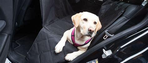 hundetransport im auto hundetransport im auto auf der r 252 ckbank floxik premium hundeprodukte