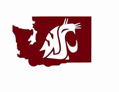 Washington State Cougs University Decal Pullman Logos