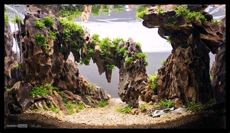Aquascaping Stones - image result for aquascape aquascapes