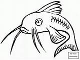 Catfish Coloring Pages Fish Drawing Printable Template Colouring Clipart Channel Clip Redtail Sketch Coloringpages101 Getdrawings Bullhead Library sketch template