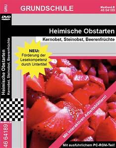 Aufbau Einer Kirschblüte : mediathek ~ Frokenaadalensverden.com Haus und Dekorationen