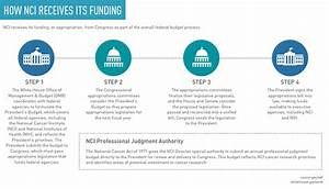 NCI Budget and Appropriations - National Cancer Institute