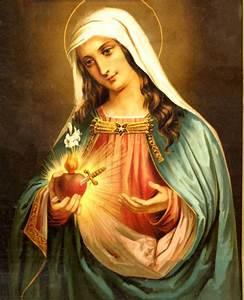 The Immaculate Heart cathlick.com | Taste the Faith. Feed ...