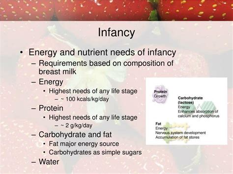 Ppt Life Cycle Maternal And Infant Nutrition Powerpoint