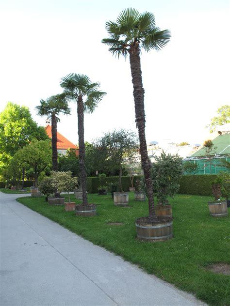 Botanischer Garten München Chormatinee by Botanischer Garten M 252 Nchen Nymphenburg