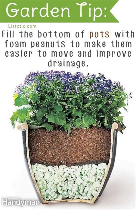20 insanely clever gardening tips and ideas flowers