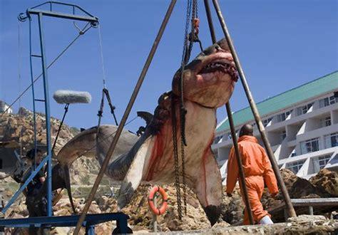 giant white shark doesnt wash   beach  inertia