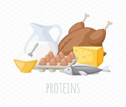 Proteins Vector Illustration Protein Meat Nutrition Healthy