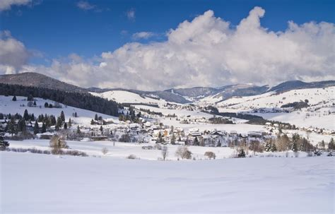 Ski Alpin, Langlauf, Winterwandern, Schneeskulpturen