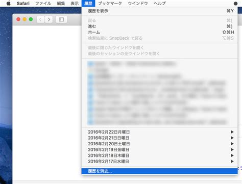 how to clear safari history and cookies on your iphone mac上のsafariの履歴やcookie キャッシュを削除する方法 ibitzedge