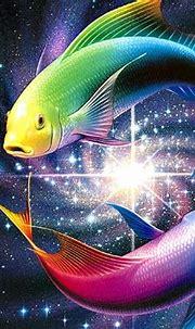 It's HD | Animals-Funny-Wallpapers: desktop wallpapers ...