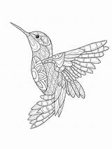 Coloring Pages Zentangle Birds Adults Adult Mycoloring Printable sketch template
