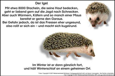 Herbst Im Garten Gedicht by Hedgehog Learning Poem Igel Text Igel Gedichte Und