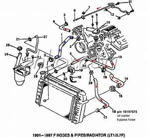 Best Radiators  Radiator Hose Diagram