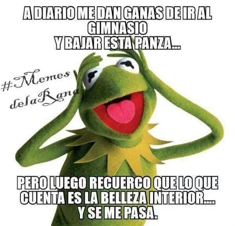 Memes De La Rana Rene - memes de la rana ren 233 con frases quot a veces quot en im 225 genes graciosas