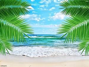 Wallpaper murals tropical beach - Just for Sharing