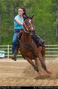 Barrel Racing Barrel Racing Horses For Sale
