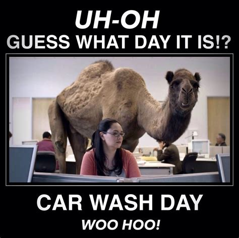 Happy #carwash Day!  Car Wash Funny  Pinterest Car