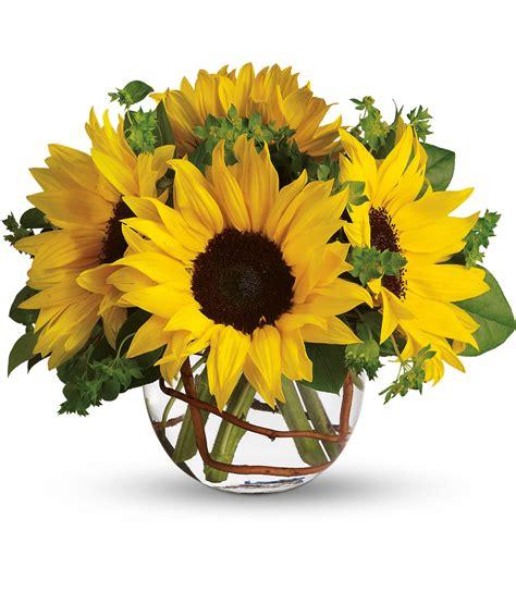 Sunny Sunflowers – Manteca Floral Co.