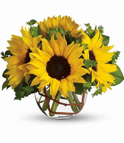 Sunflowers Sunny Floral Well