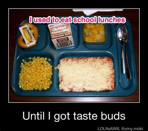 School Lunch Meme - pinstrosity mix it up monday what