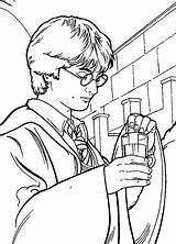 Harry Potter Chamber Secrets Fun Coloring sketch template