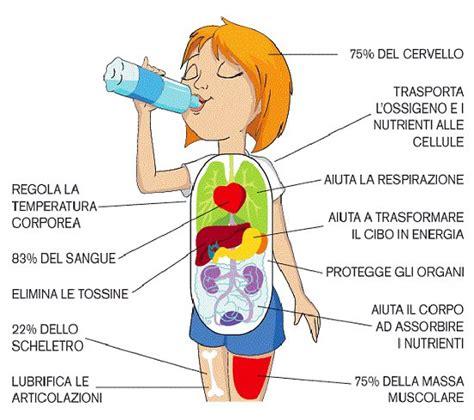 immagini corpo umano per bambini yq46 187 regardsdefemmes