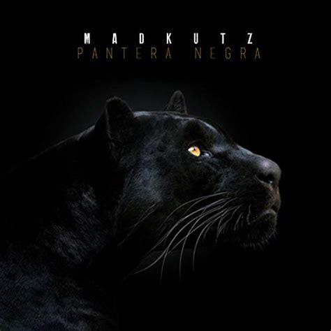 Pantera Animal Wallpaper - pantera negra by madkutz on