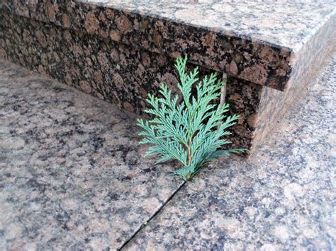 einbrecher zeichen steine gaunerzinken steine