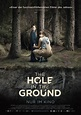 The Hole in the Ground Movie Poster (#4 of 5) - IMP Awards
