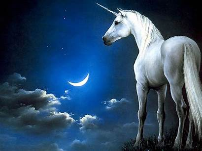 Horse Moon Landscape Animal Anime Magical Unicorn