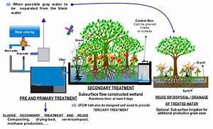 Sewage Treatment