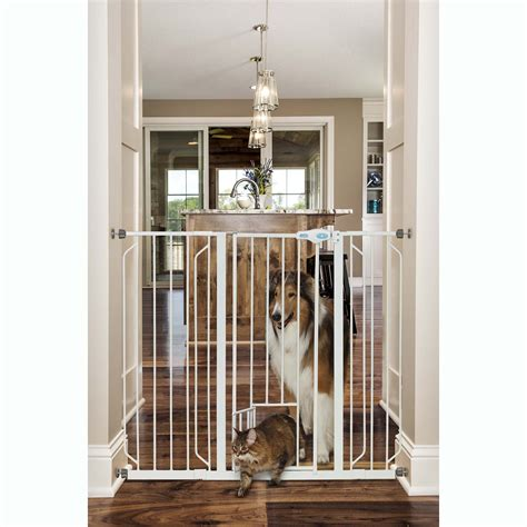 gate with door carlson pet products expandable gate with small