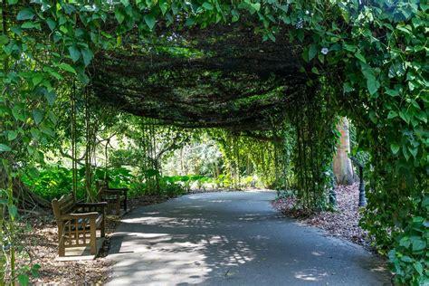 Botanischer Garten Singapur Bilder by Panorama Wokenkratzer Singapur Bilder Und Fotos