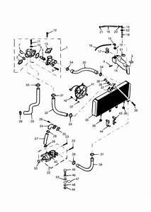 1999 Triumph Trophy Hose Outlet  System  Cooling  Engine