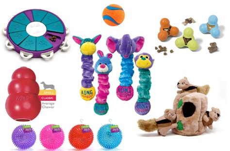 Best Toys For Top 15 Best Toys For Small Dogs