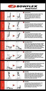 Bowflex Full Body Workout Routine