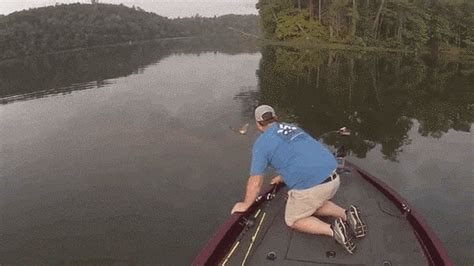Float Your Boat Gif by Fishermen Rescue Abandoned Kittens That Swam To Their Boat