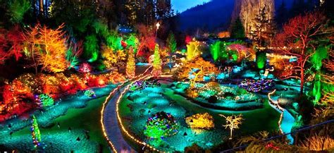 discover  magic  christmas   butchart gardens