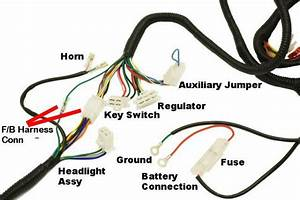 Complete Gy6 Wire Harness - Electrical