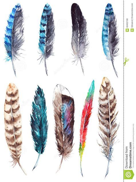 plume d oiseau dessin ensemble exotique color 233 de plume d oiseau d aquarelle