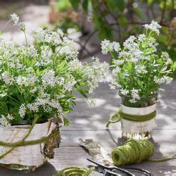 schattenbeet richtig gestalten pflanzen anlegen und