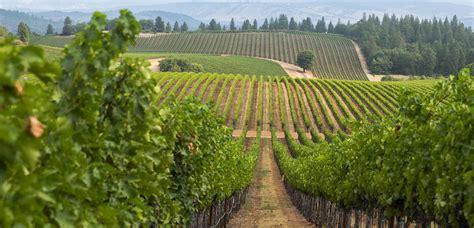 Responsibility   E. & J. Gallo Winery