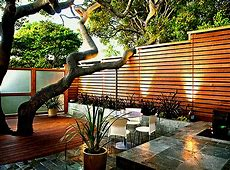 Mid Century Modern Landscaping Ideas And Picture Hamipara