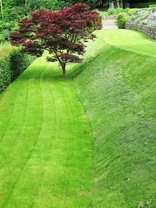 Semer Gazon Periode : guide pratique du gazon la terre est un jardin ~ Melissatoandfro.com Idées de Décoration
