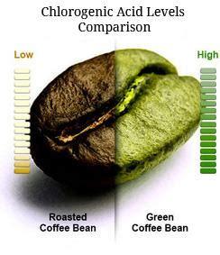 ¿Qué es Extracto de Café Verde? ? ? Buy Authentic Nuez de la India & Semilla de Brasil with Free