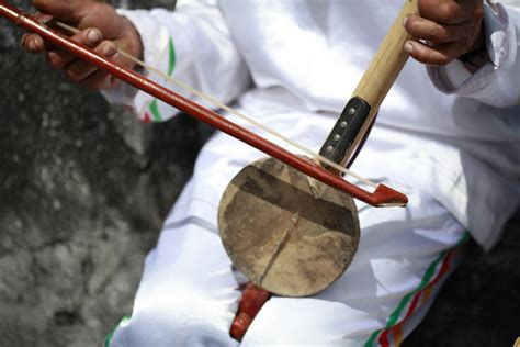 Bedasarkan tinggi rendah nada yang dihasilkan, biola juga dibagi lagi menjadi beberapa jenis yaitu biola alto, biola cello, dan biola double. Uniknya Arababu Dalam Lantunan Musik Tradisional Ternate : Kesenian - Situs Budaya Indonesia